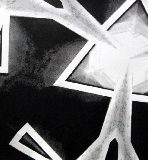 """""""Strahlenast"""", Siebdruck auf Papier, 21cm × 29,7cm"""