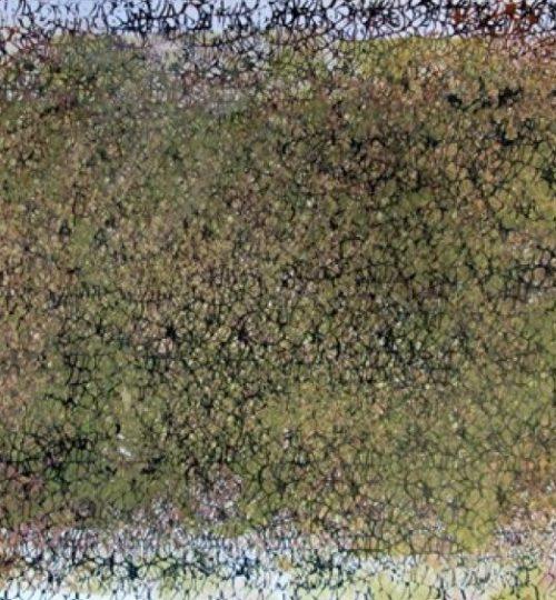 """""""Netzvariation 2"""", Siebdruck auf Papier, 45 x 63 cm"""