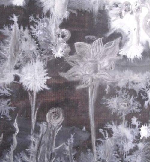 """""""Eisblumenwald"""", Fotografie, 29,7 x 21 cm"""